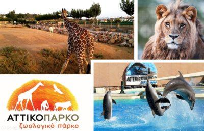 Αττικό Ζωολογικό Πάρκο - ένας μικρός παράδεισος στα Μεσόγεια